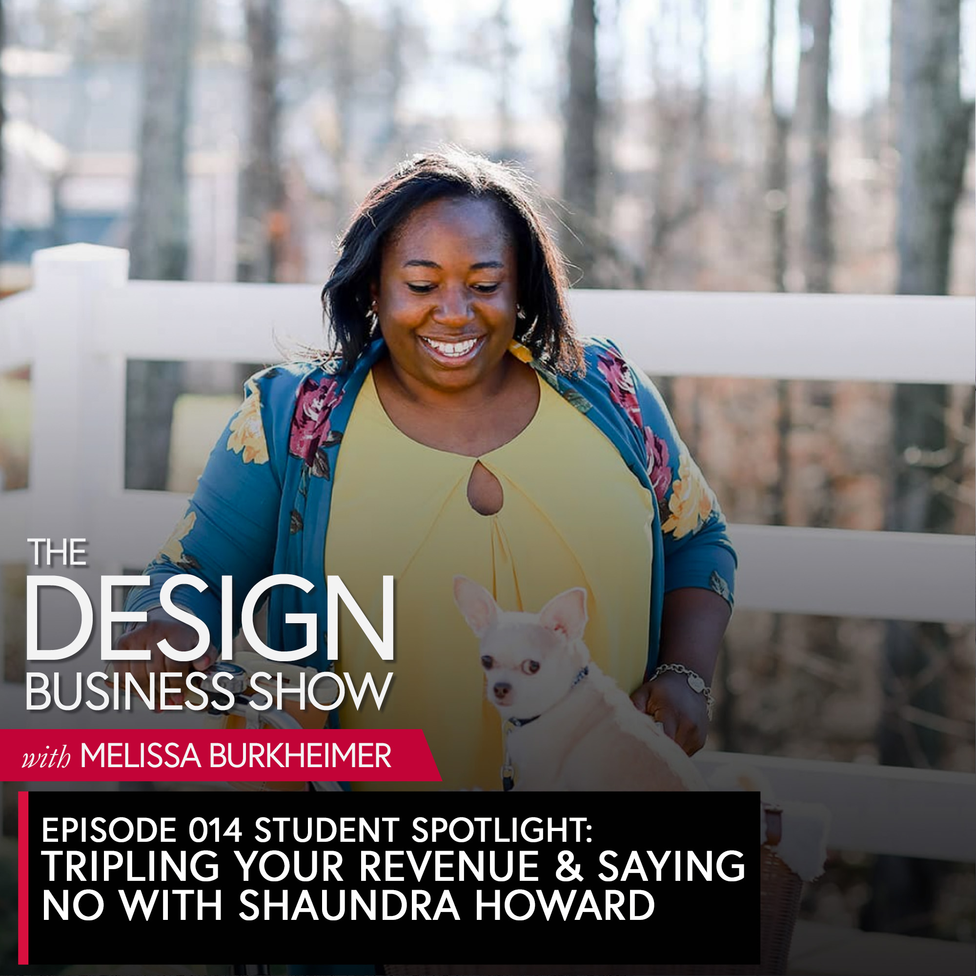 Learn how Shaundra Howard went from working with random design clients to shifting her services and tripling her revenue.